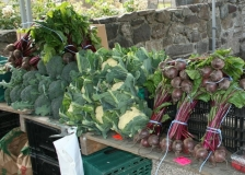 Finlay's veg 3 July 2014
